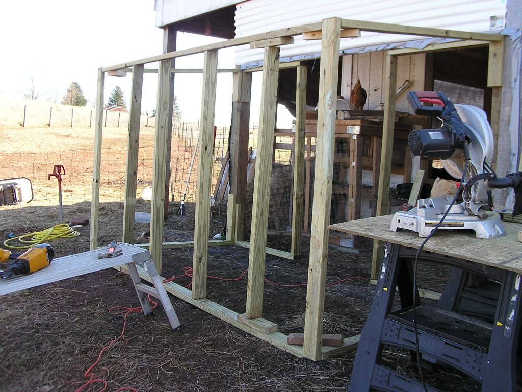 backside view of the coop frame